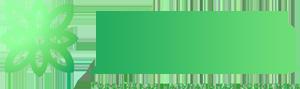 lesana logo-333